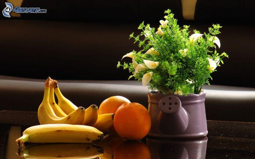 plátanos, naranjas, flores blancas