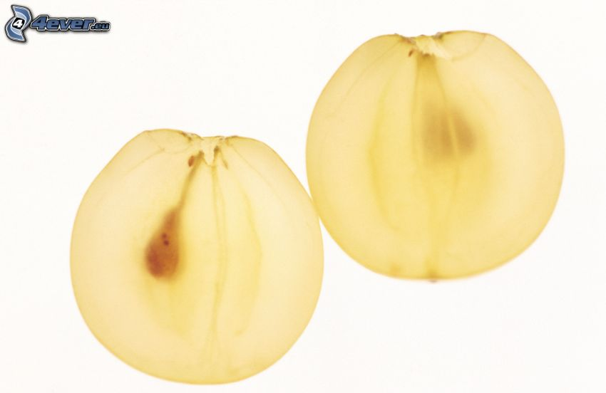 uvas, acino