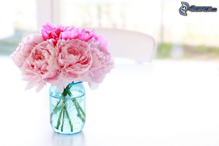 peonía, flores de color rosa, flores en un florero