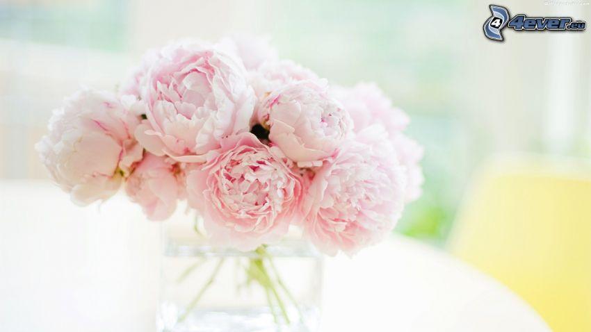 peonía, flores en un florero