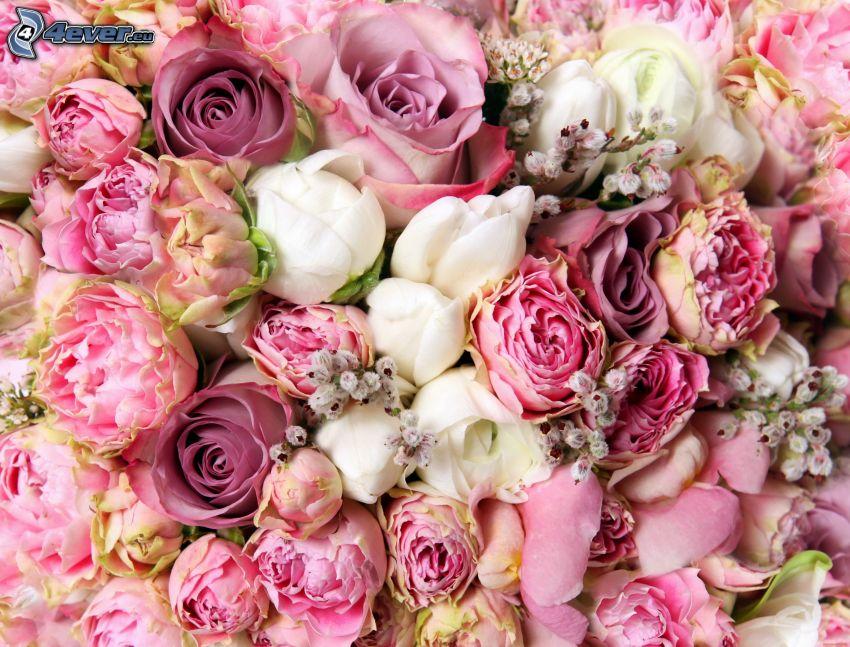 peonía, rosas, ramo