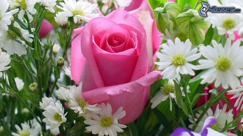 rosas de color rosa, flores de campo, ramo