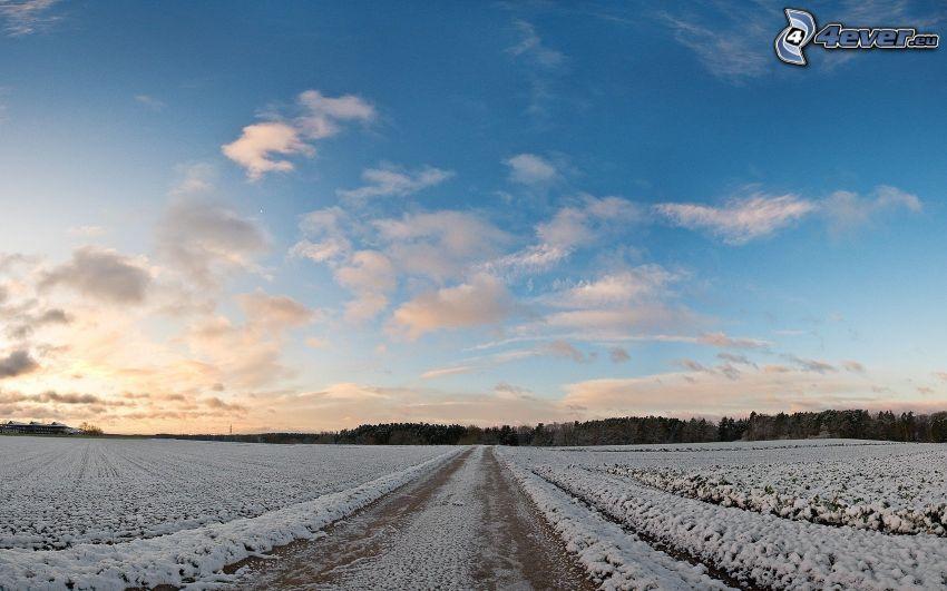 prado cubierto de nieve, cielo