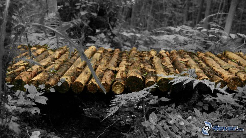 puente de madera, corriente que pasa por un bosque