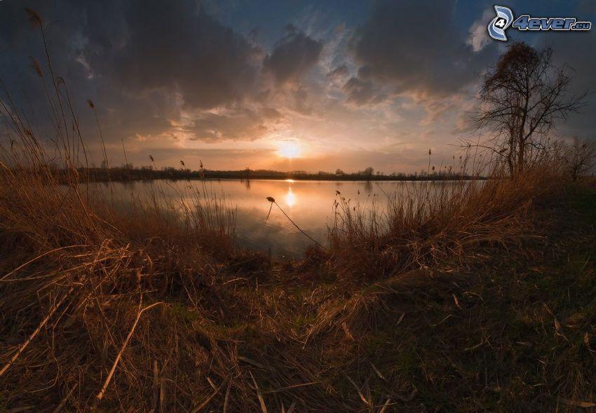 puesta de sol sobre el lago, hierba seca, nubes
