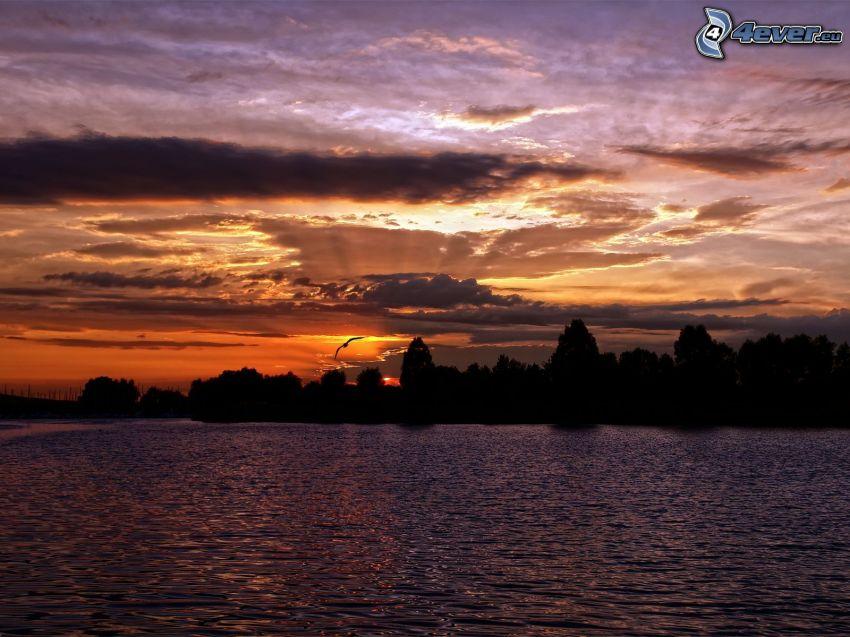 puesta de sol sobre un lago, bosque, nubes