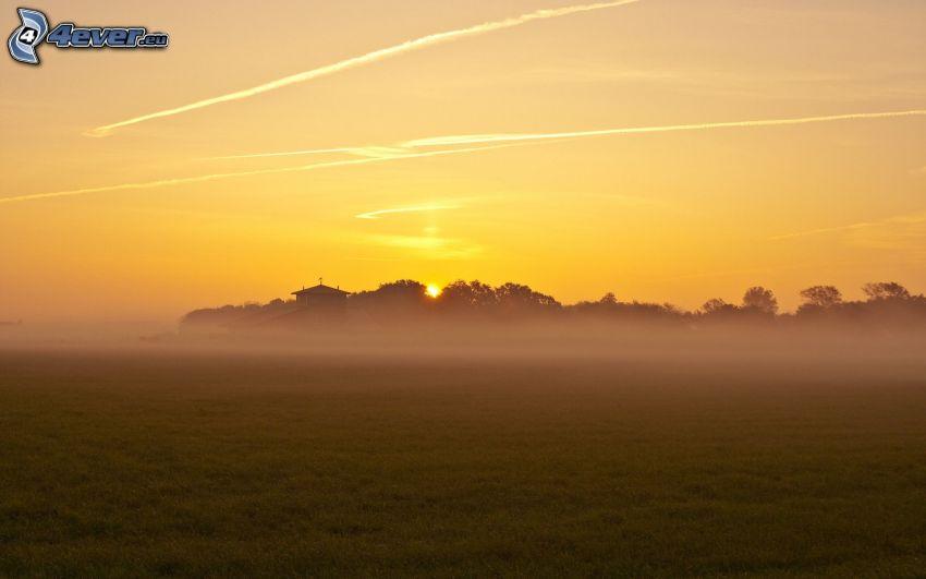 puesta del sol, prado, niebla baja, cielo amarillo, marcas de condensación