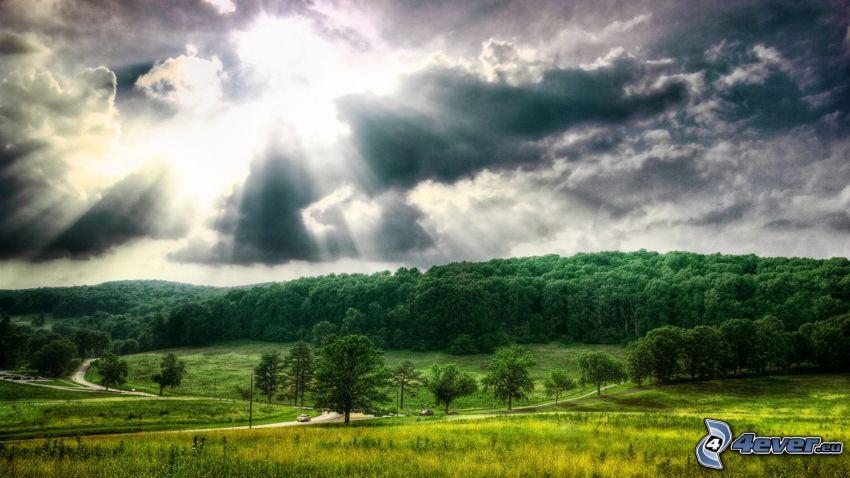 rayos del sol detrás de las nubes, bosque, prado, árboles, nubes, sol