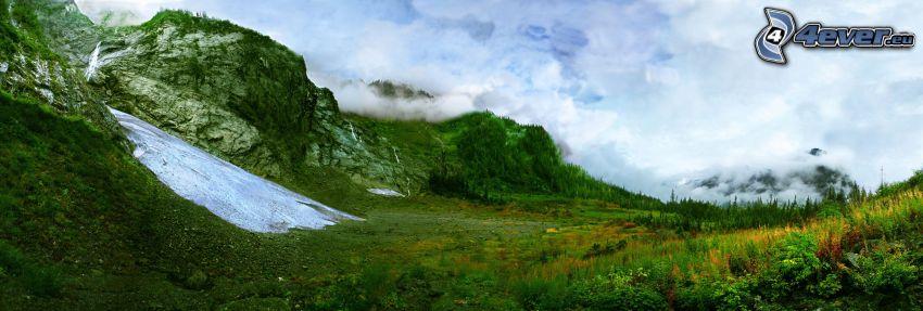 rocas, hierba verde, nieve