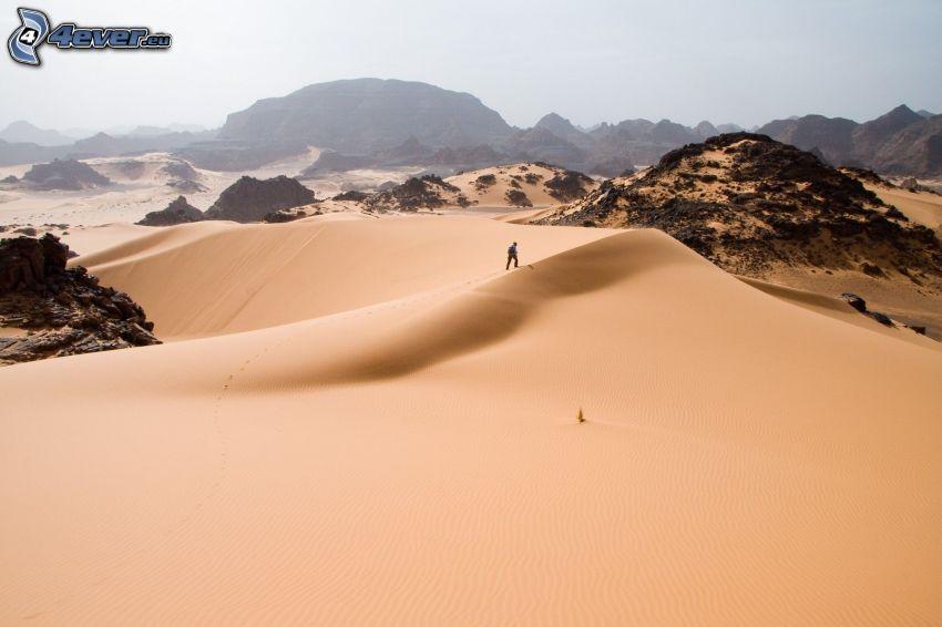 Sahara, dunas de arena, hombre