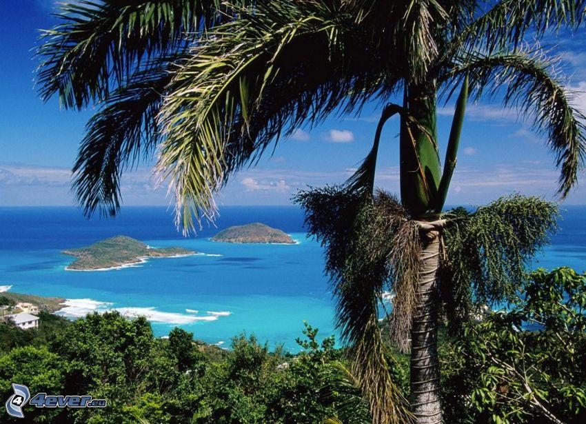 Santo Tomé y Príncipe, palmera, islas, mar