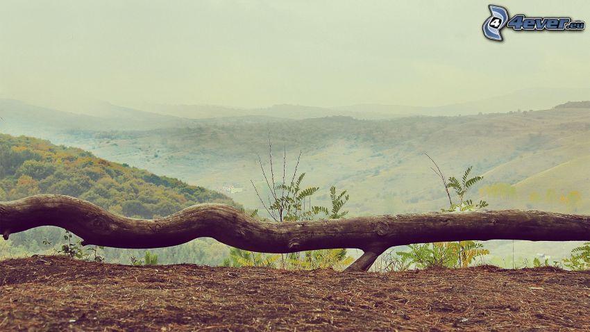 tribu, colina