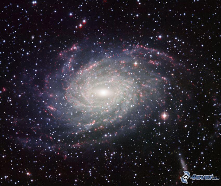 galaxia espiral, estrellas