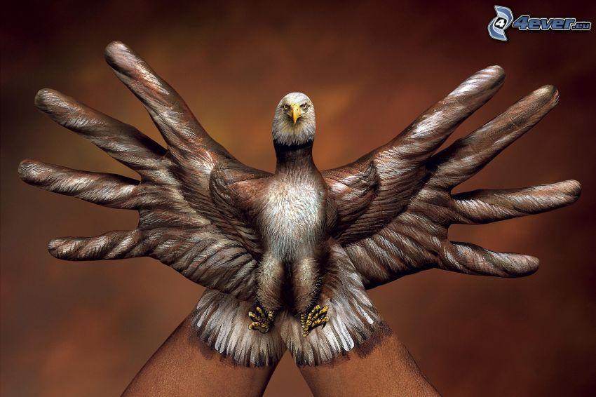 águila, manos, bodypainting