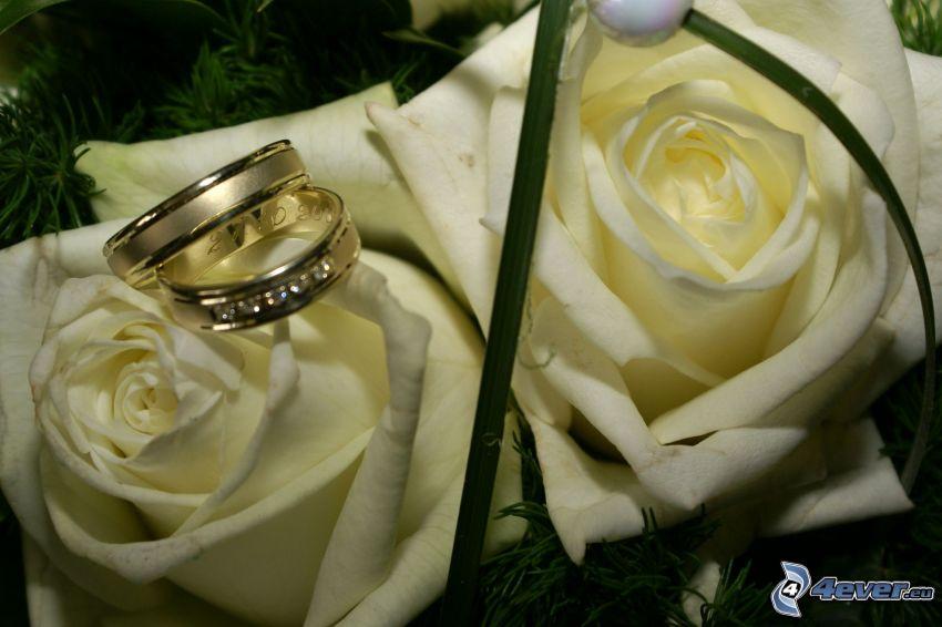 boda, anillo