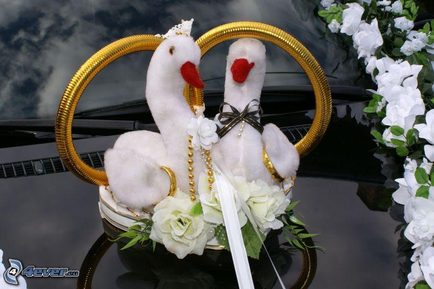 boda, coche