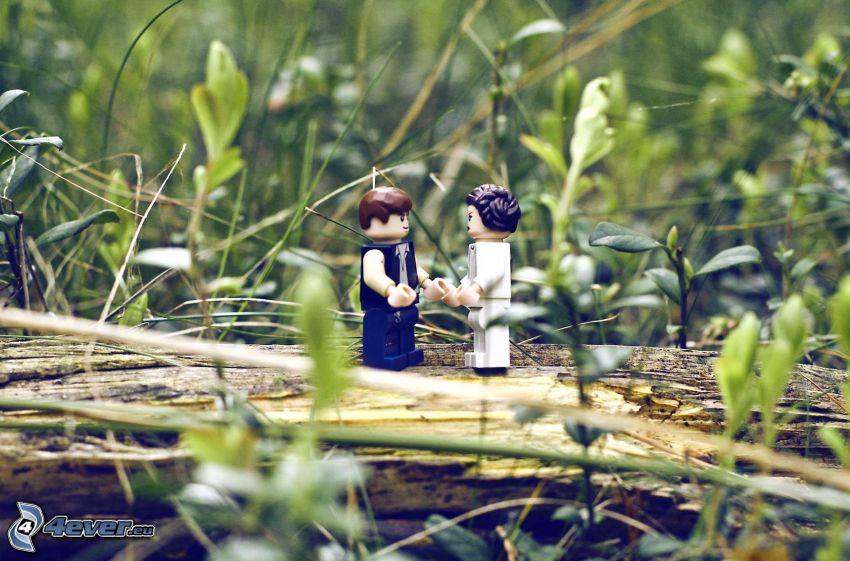 caracteres, Lego, hierba