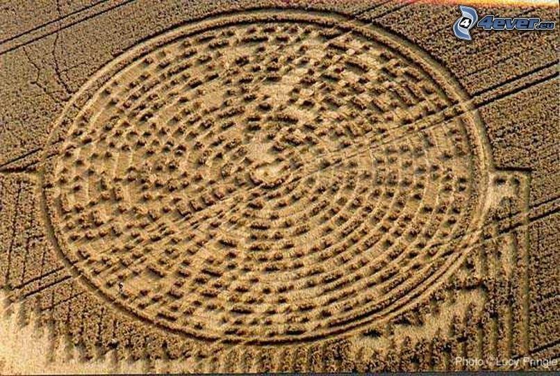 círculos en las cosechas, código, mensaje