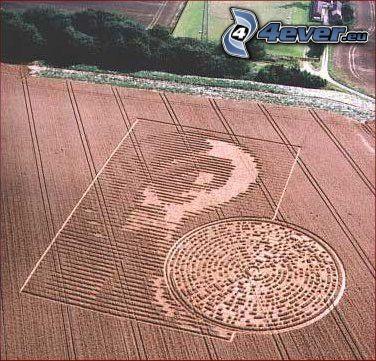 círculos en las cosechas, mensaje, campo