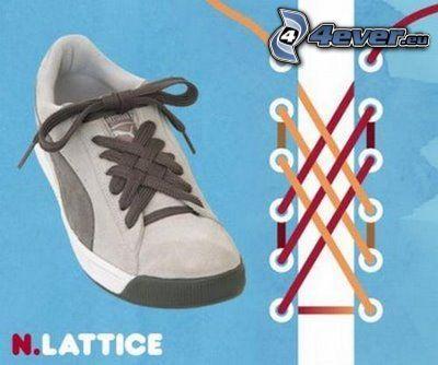 cordones, zapatos