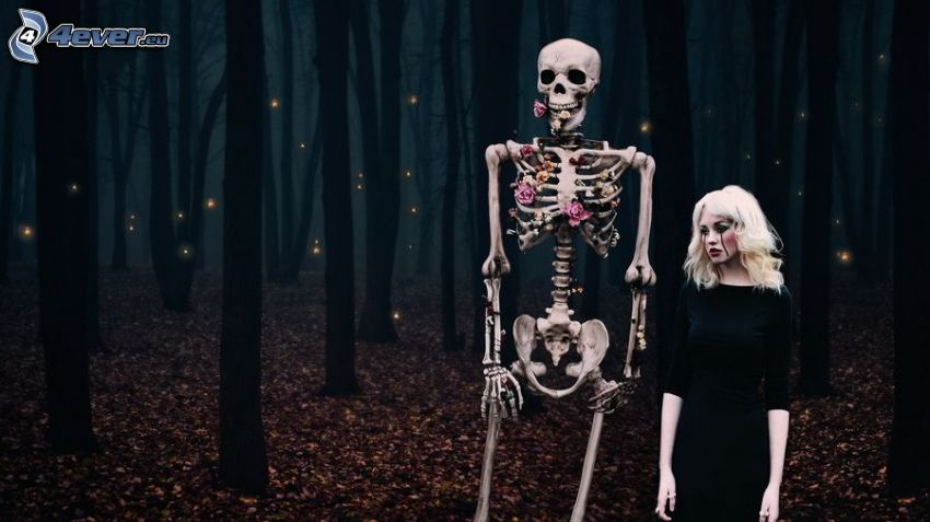esqueleto, cadáver, bosque oscuro