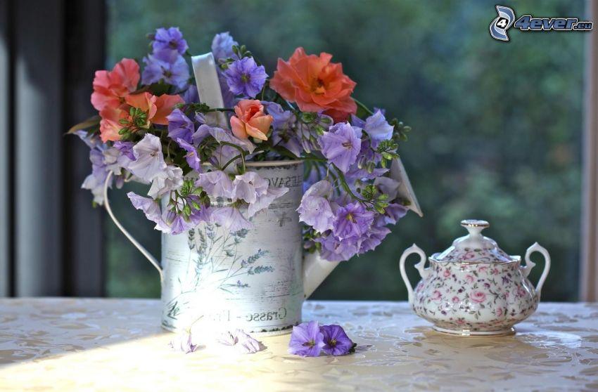 flores de campo, regadera, tetera
