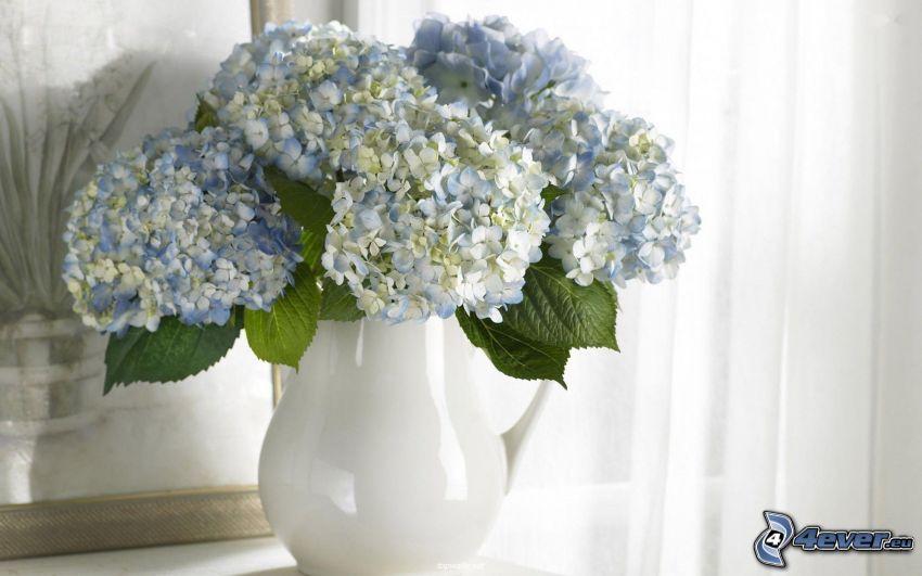 flores en un florero, hortensia