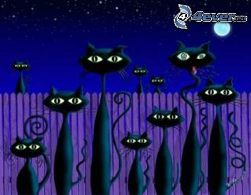 gatos negros, gato de la historieta