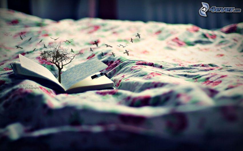 libro, árbol, edredón, bandada de pájaros