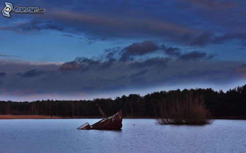 naufragio, bosque, lago