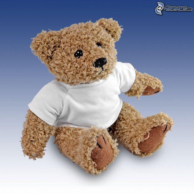oso de peluche, camiseta blanca