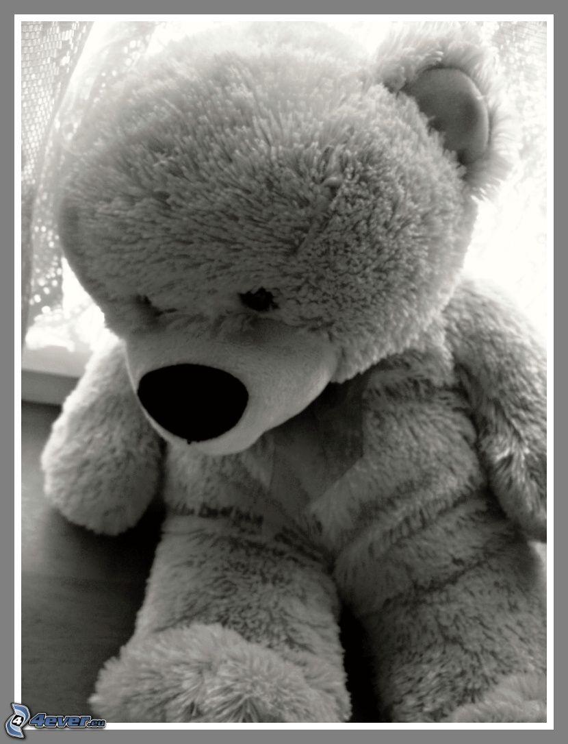 oso de peluche, juguete
