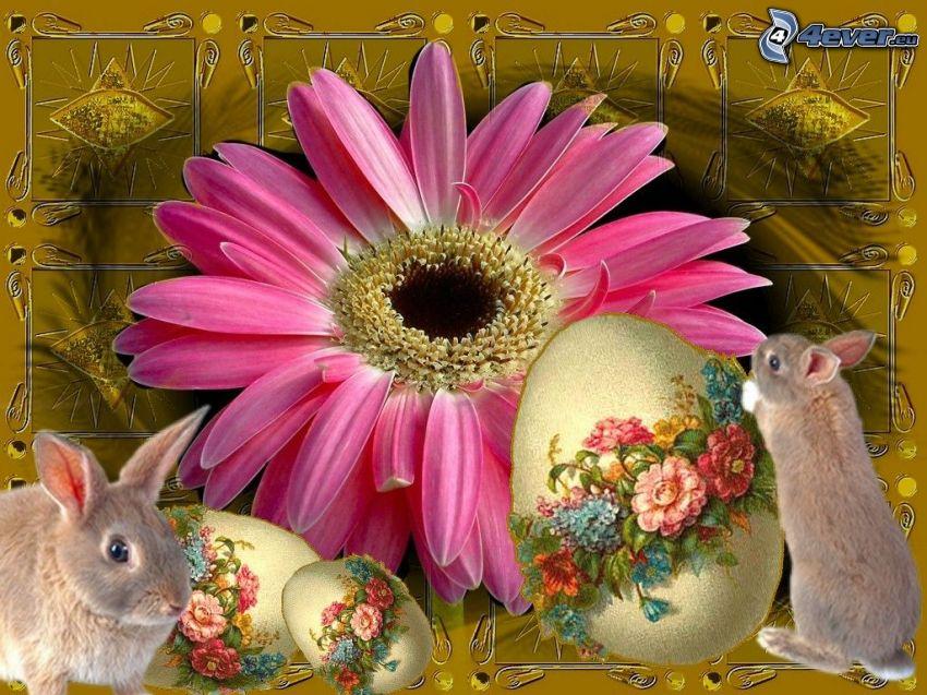 Pascua, conejo, flor, huevo