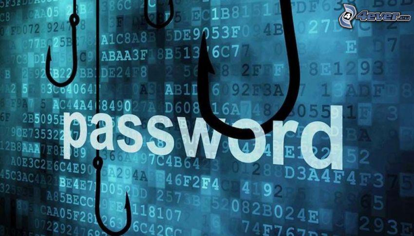 password, contraseña, gancho, números