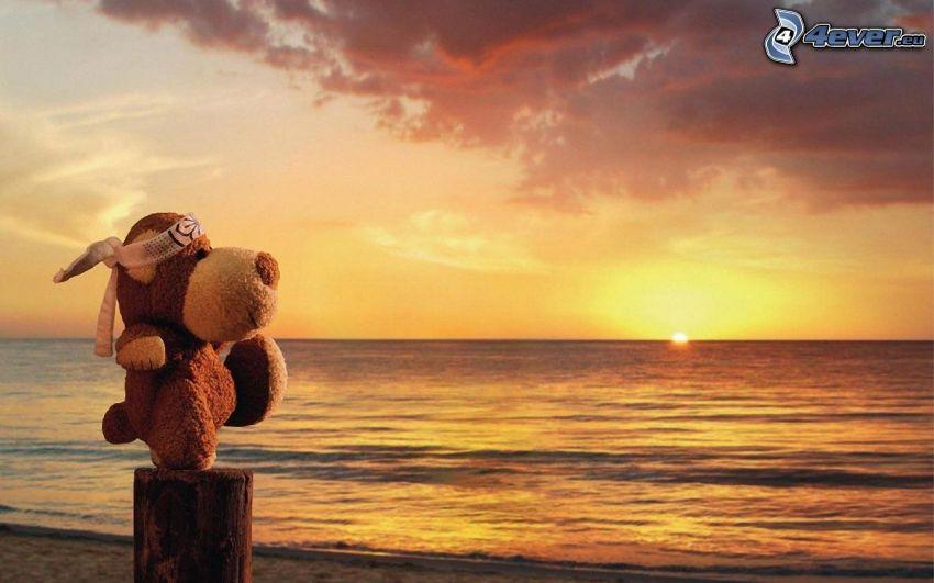 perro peluche, puesta de sol en el mar, tronco