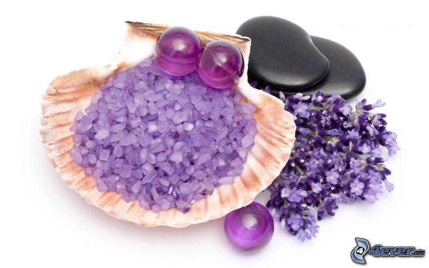 piedras, concha, perlas