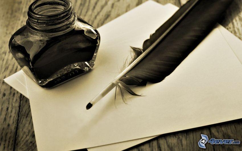 pluma, tinta, papeles