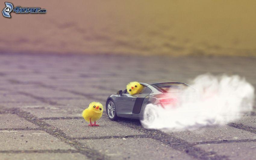 pollito, coche