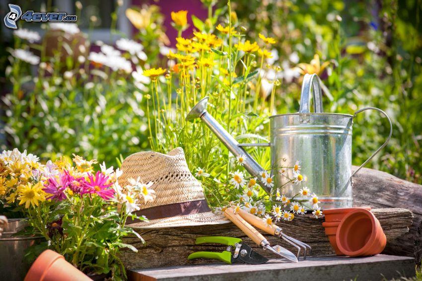 regadera, sombrero, tijeras, herramientas, olla, flores de campo