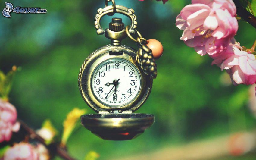 reloj histórico, colgante, flores de color rosa