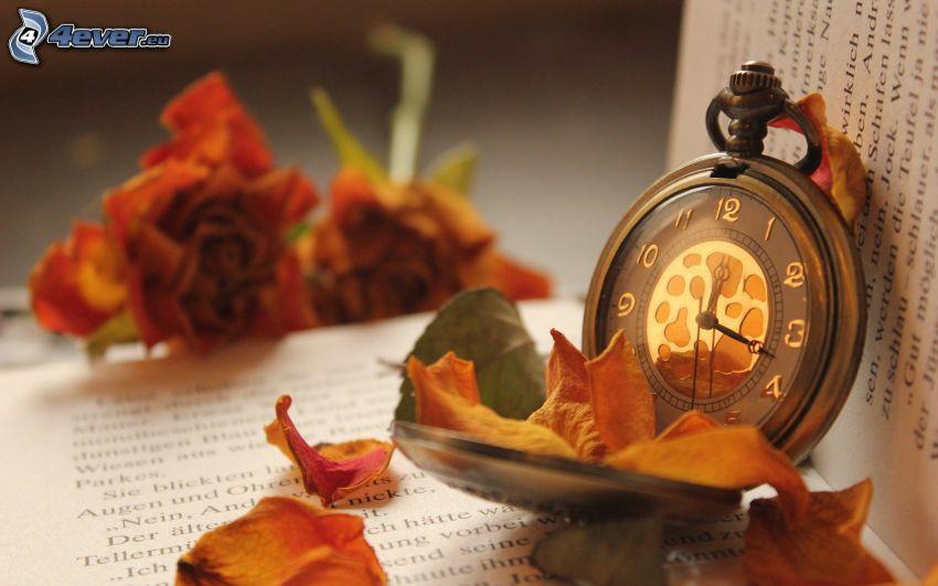reloj histórico, pétalos de rosa, libro
