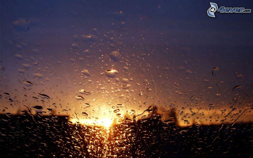rocío en vidrio, gotas de agua, puesta del sol