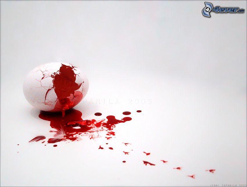 sangre, huevo, concha, huellas