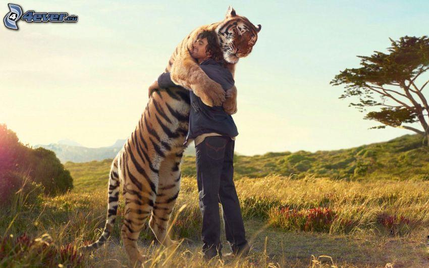 abrazar, hombre, tigre, hierba seca, árbol