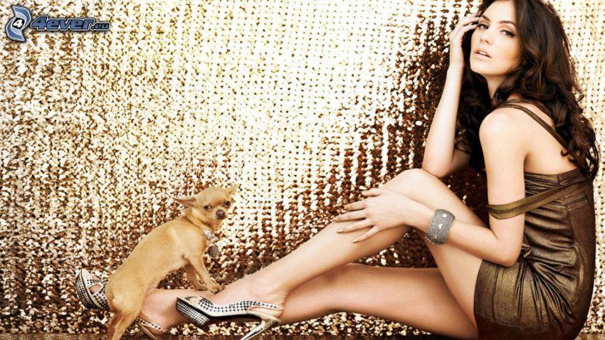 Katharine Mcphee, vestido marrón, chihuahua