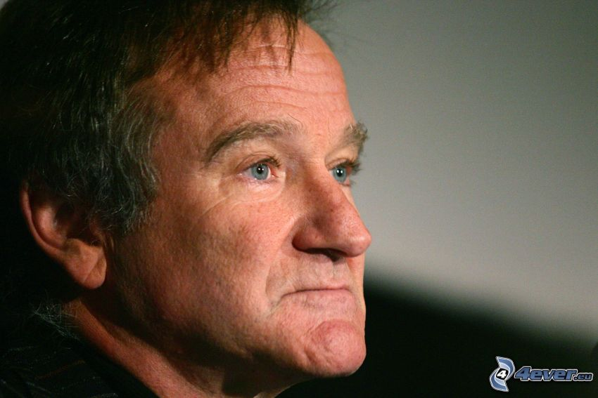 Robin Williams, mirada