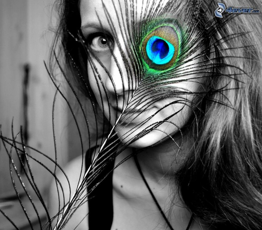 chica, pluma de pavo real, ojo