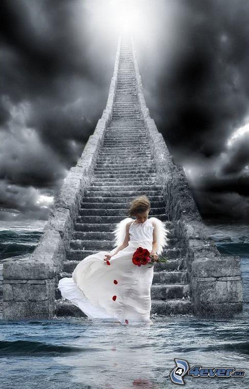 escalera al cielo, ángel, agua, niño, tormenta, nubes oscuras, pétalo, flores, cielo