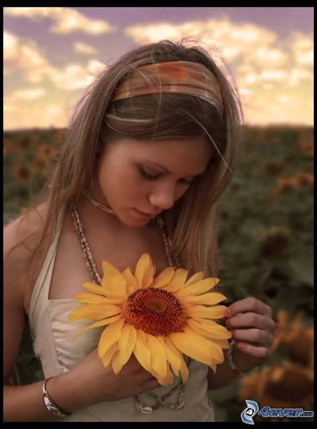 me ama - no me ama, chica en el prado, girasol, flor