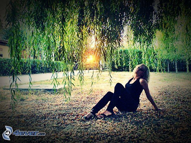 mujer, mimbre, césped, hojas, puesta del sol